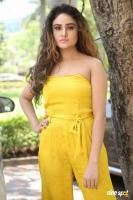 Sony Charishta at Mela Movie Teasar Launch (2)