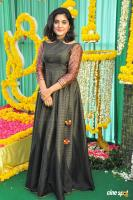 Nivetha Thomas Latest Images (15)
