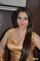Misti Mukherjee  actress photos,stills (7)