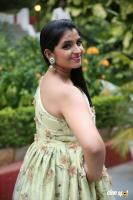 Syamala Latest Pictures (18)