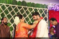 Sreejith Vijay marriage photos (3)