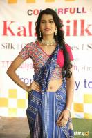 Kala Silk Expo Curtain Raiser Event (10)