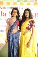 Kala Silk Expo Curtain Raiser Event (7)