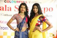 Kala Silk Expo Curtain Raiser Event (8)
