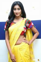 Sravani Yadav at Kala Silk Expo Curtain Raiser (4)