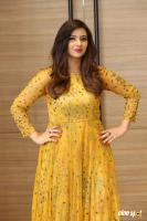 Isha Chawla Latest Photos (7)