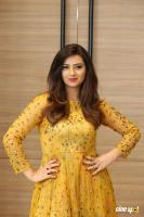 Isha Chawla Latest Photos (8)