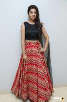 Payal Rajput at RX 100 Movie Trailer Launch (14)