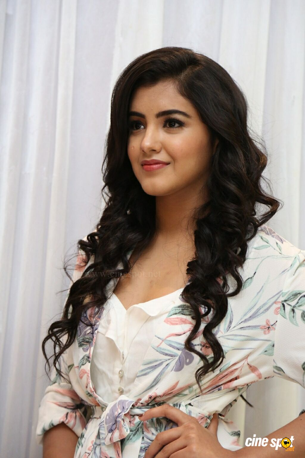 Malvika Sharma at Nela Ticket Press Meet (11)
