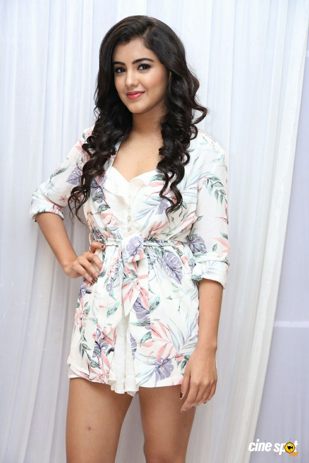 Malvika Sharma at Nela Ticket Press Meet (6)