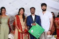 Rajkumar Periasamy & Jaswini Wedding Reception (19)