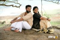Thenkasi Kattu Malayalam Movie Photos