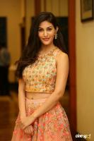 Amyra Dastur at Raju Gadu Movie Pre Release Event (16)
