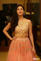 Amyra Dastur at Raju Gadu Movie Pre Release Event (3)