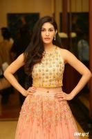 Amyra Dastur at Raju Gadu Movie Pre Release Event (4)