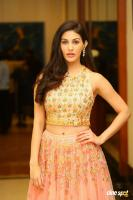 Amyra Dastur at Raju Gadu Movie Pre Release Event (6)