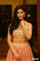 Amyra Dastur at Raju Gadu Movie Pre Release Event (8)