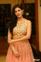 Amyra Dastur at Raju Gadu Movie Pre Release Event (9)