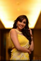 Parvatii Nair at Neerali Audio Launch (10)