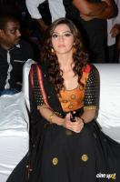 Mehreen Pirzada at Pantham Audio Launch (1)