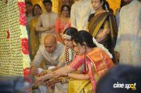 TSR Grandson Anirudh Wedding Photos (7)