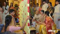 TSR Grandson Anirudh Wedding Photos (8)