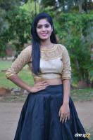 Varshita Tamil Actress Photos