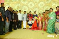 Ambica Krishna Grandson Wedding Reception Photos