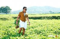 Kadaikutty Singam New Images (22)