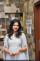 Madonna Sebastian at Iblis Movie Audio Launch (1)