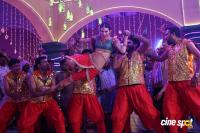 Driver Ramudu Movie Item Song Photos (13)