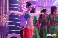 Driver Ramudu Movie Item Song Photos (6)