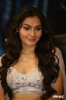 Andrea Jeremiah at Vishwaroopam 2 Audio Launch (19)