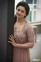 Pooja Kumar New PhotoShoot  (9)