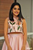 Nivetha Thomas at Neevevaro Audio Launch (12)