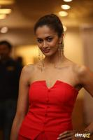 Shubra Aiyappa at SIIMA 7th Edition Curtain Raiser (4)