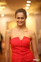 Shubra Aiyappa at SIIMA 7th Edition Curtain Raiser (6)