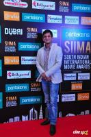 SIIMA Short Film Awards 2018 Event (42)