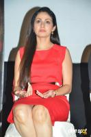 Torch Light Movie Press Meet (10)