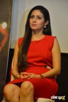 Torch Light Movie Press Meet (19)