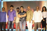 Kurukshetram Movie Pre Release Event (32)