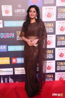 Sshivada at SIIMA Awards 2018 Red Carpet (6)