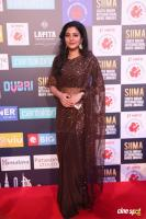 Sshivada at SIIMA Awards 2018 Red Carpet (8)