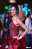 Shubra Aiyappa at SIIMA Awards 2018 Red Carpet (1)