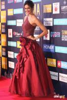 Shubra Aiyappa at SIIMA Awards 2018 Red Carpet (7)