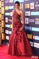 Shubra Aiyappa at SIIMA Awards 2018 Red Carpet (8)