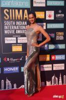 Shubra Aiyappa at SIIMA 2018 (1)