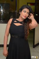 Radhika at Gandaberunda Audio Launch (13)