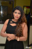 Radhika at Gandaberunda Audio Launch (17)