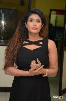Radhika at Gandaberunda Audio Launch (18)